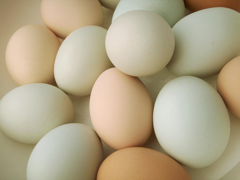 Easter Egg Overdose - Café Casey